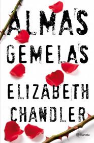 Almas gemelas. Elizabeth Chandler. El bolso amarillo