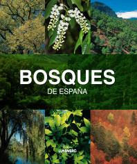 Bosques de España. Lunwerg Medium. Joaquín Araújo. El bolso amarillo
